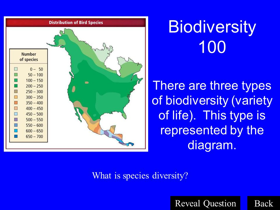Population Dynamics 100 The number of members of a population living in a given area at the same time. What is population density? Back Reveal Questio