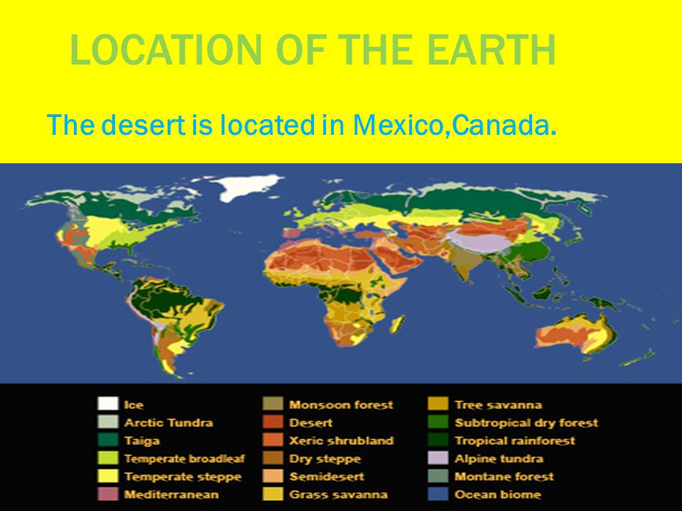 LOCATION OF THE EARTH The desert is located in Mexico,Canada.
