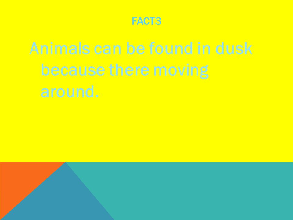 FACT3 Animals can be found in dusk because there moving around.