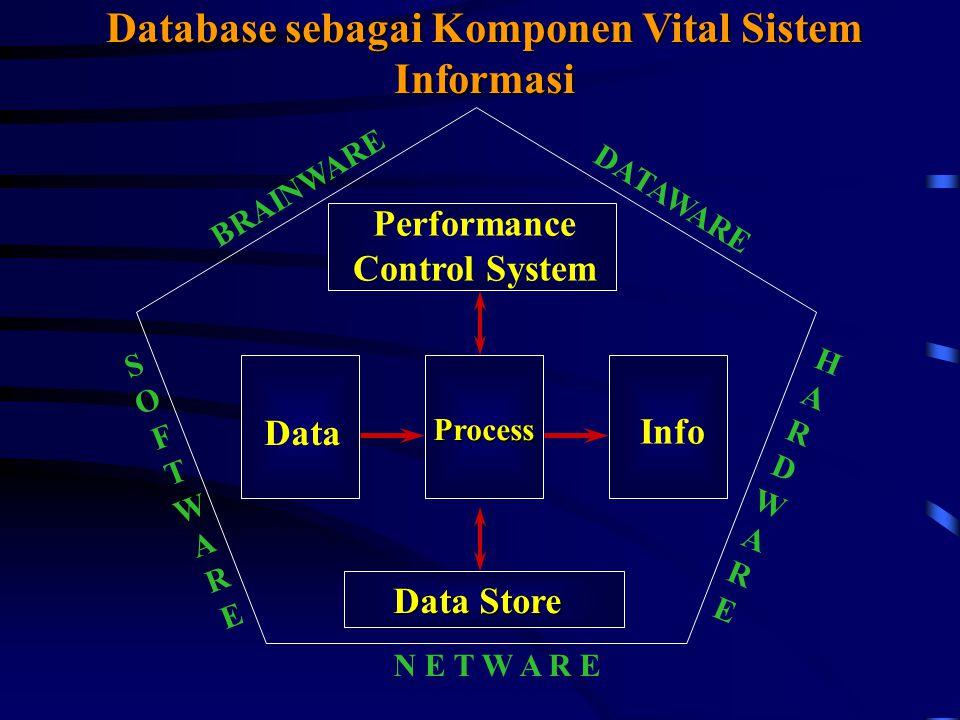 Performance Control System Data Info Process Data Store BRAINWARE DATAWARE HARDWAREHARDWARE SOFTWARESOFTWARE N E T W A R E Database sebagai Komponen Vital Sistem Informasi