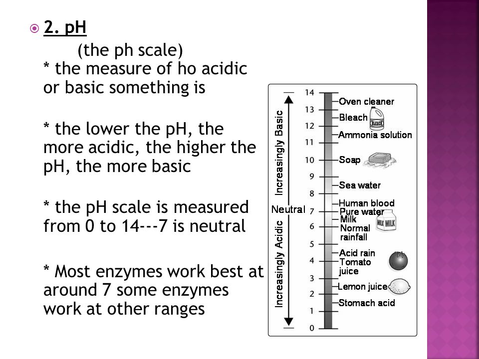  2. pH (the ph scale) * the measure of ho acidic or basic something is * the lower the pH, the more acidic, the higher the pH, the more basic * the p