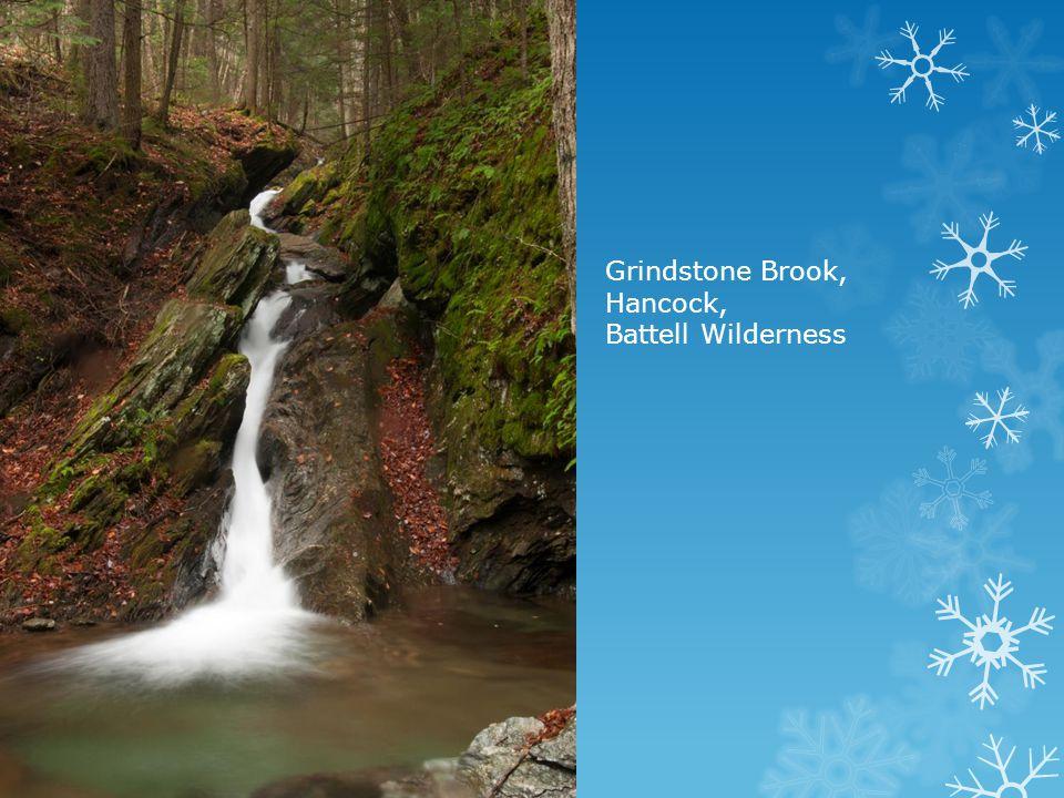 Grindstone Brook, Hancock, Battell Wilderness
