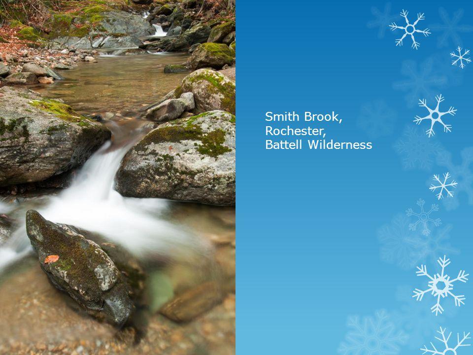 Smith Brook, Rochester, Battell Wilderness