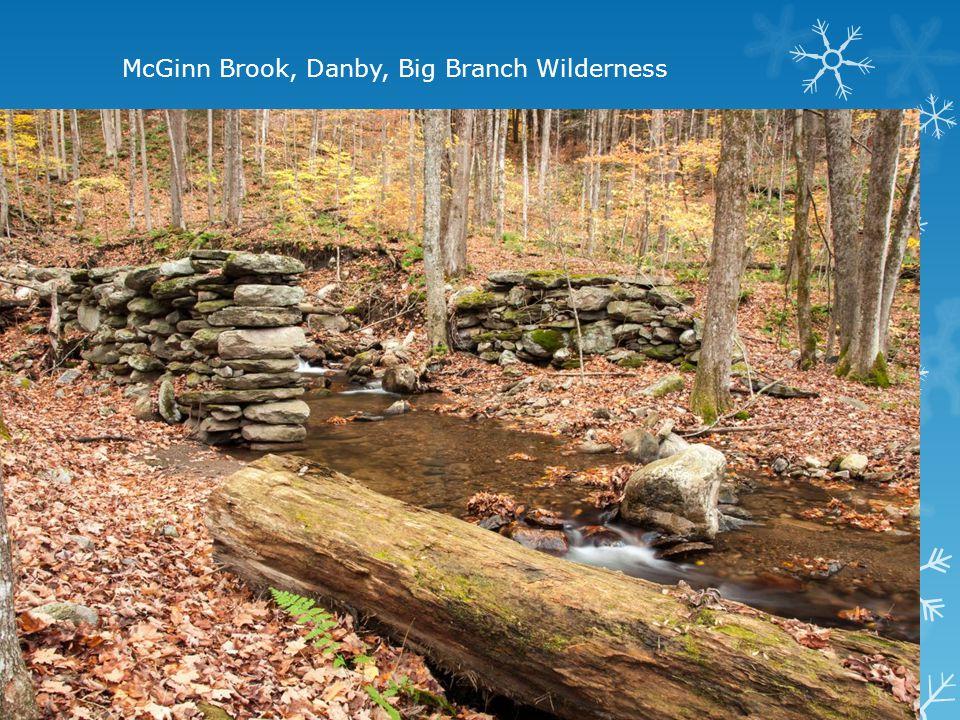 McGinn Brook, Danby, Big Branch Wilderness