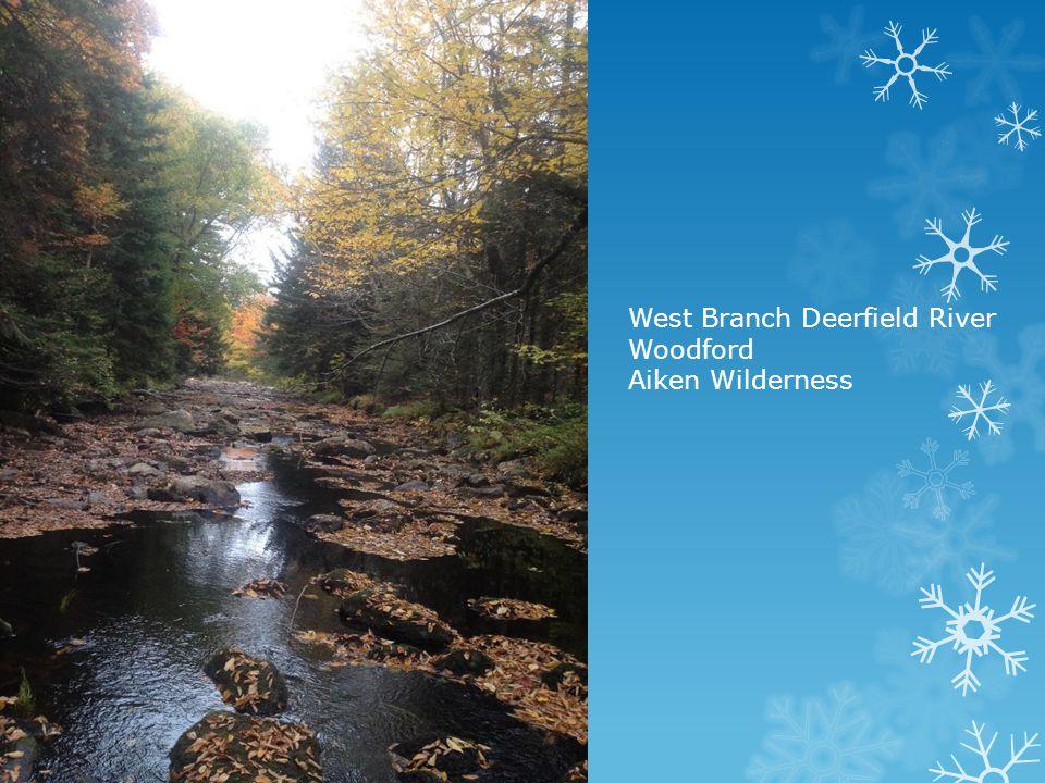 West Branch Deerfield River Woodford Aiken Wilderness