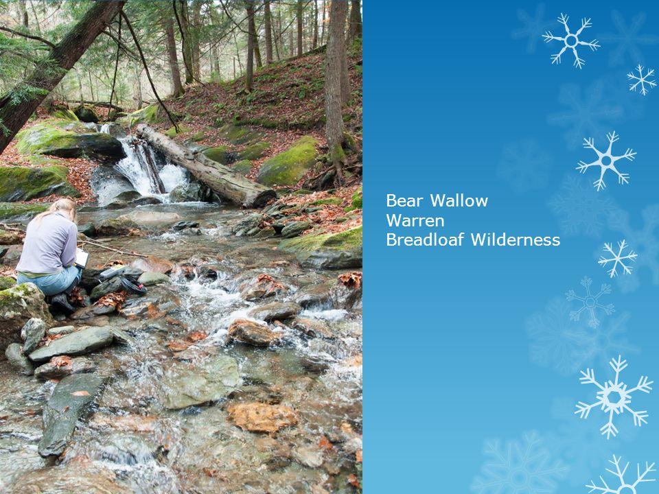 Bear Wallow Warren Breadloaf Wilderness