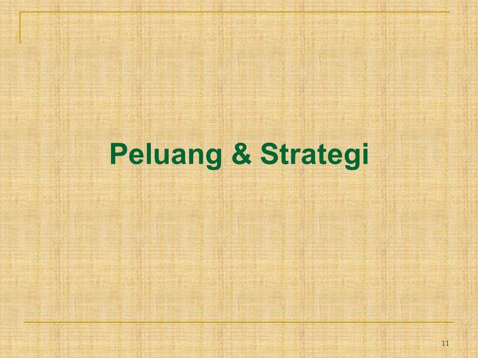 11 Peluang & Strategi
