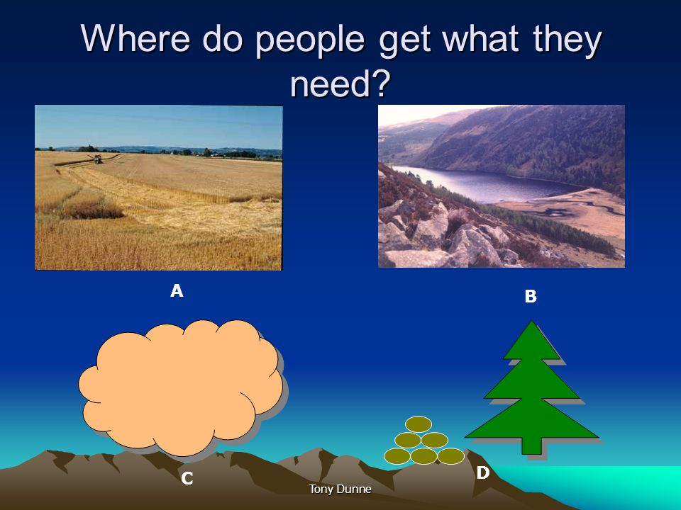 Where do people get what they need? A B C D Tony Dunne