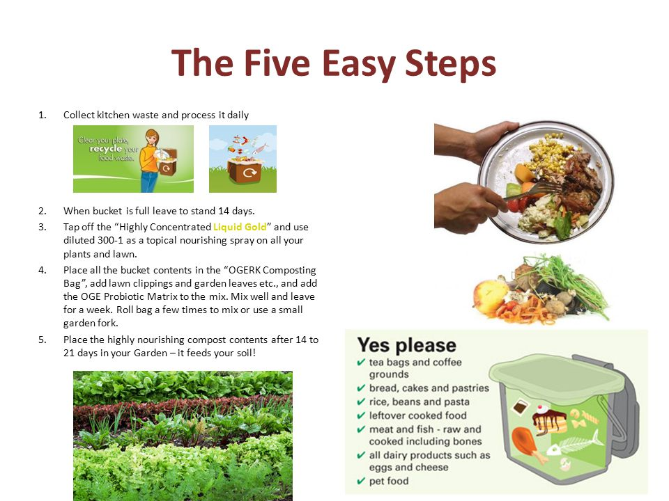 The Five Easy Steps 1.Collect kitchen waste and process it daily 2.When bucket is full leave to stand 14 days.
