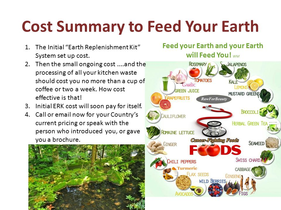 Cost Summary to Feed Your Earth 1.The Initial Earth Replenishment Kit System set up cost.