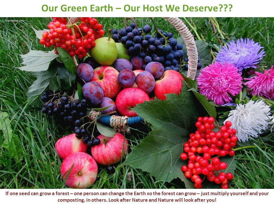 Our Green Earth – Our Host We Deserve??.