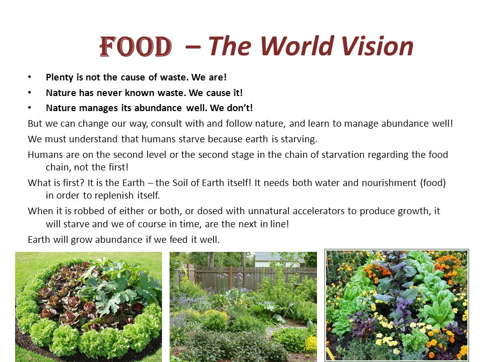 – The World Vision Plenty is not the cause of waste.