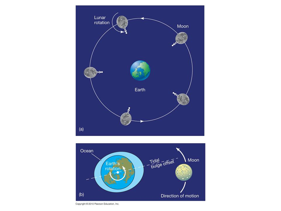 Question 6 a) the Sun's gravity b) Earth's magnetic field c) Earth's tidal force d) the solar wind e) the Moon's magnetic field What force riveted the Moon's near side to constantly face Earth?