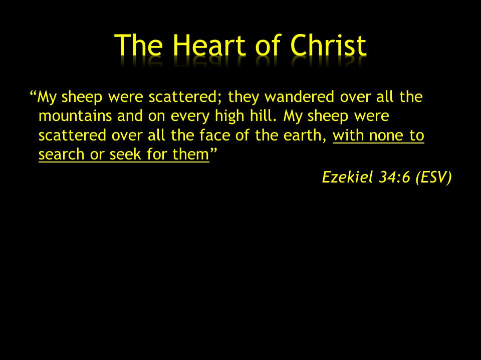 My sheep were scattered; they wandered over all the mountains and on every high hill.