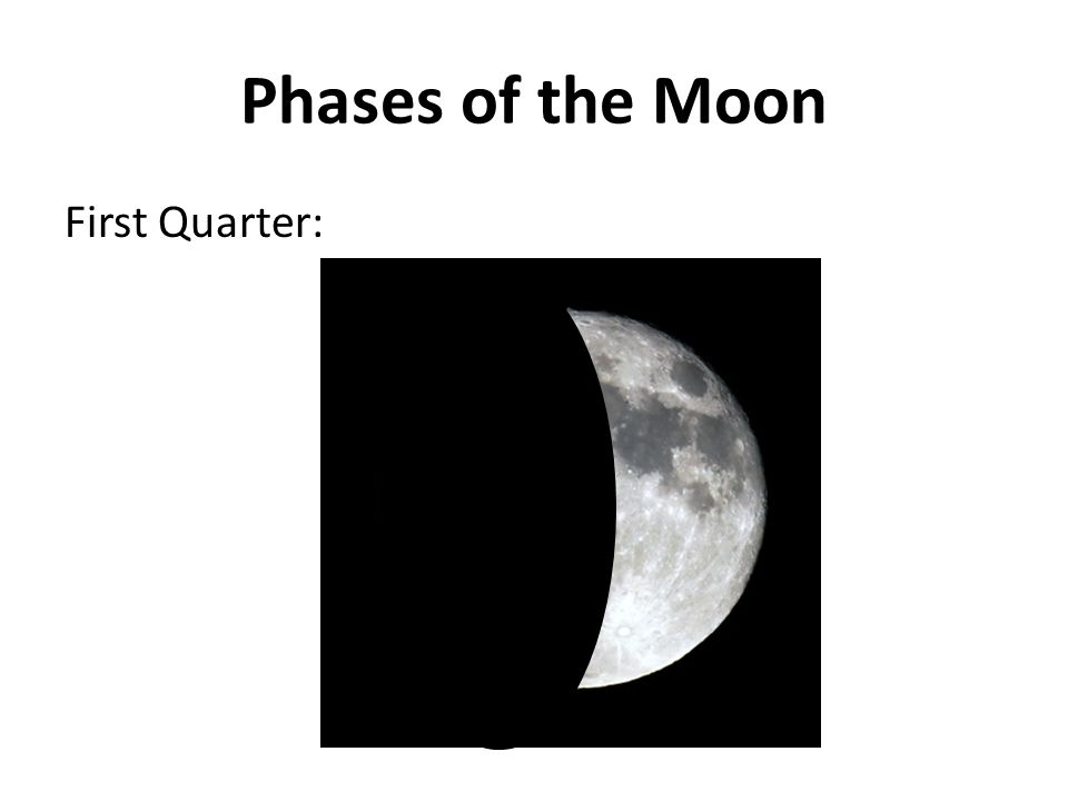 Phases of the Moon First Quarter: