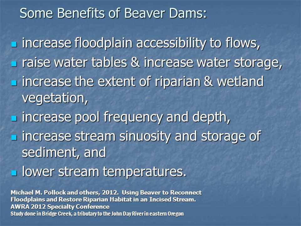 Some Benefits of Beaver Dams: Some Benefits of Beaver Dams: increase floodplain accessibility to flows, increase floodplain accessibility to flows, raise water tables & increase water storage, raise water tables & increase water storage, increase the extent of riparian & wetland vegetation, increase the extent of riparian & wetland vegetation, increase pool frequency and depth, increase pool frequency and depth, increase stream sinuosity and storage of sediment, and increase stream sinuosity and storage of sediment, and lower stream temperatures.