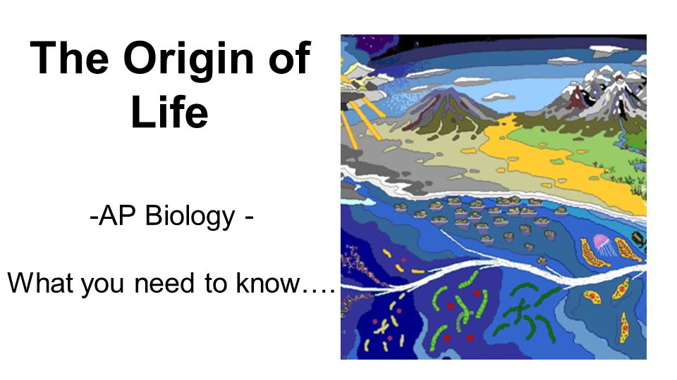 Enduring understanding 1.D: The origin of living systems is explained by natural processes.