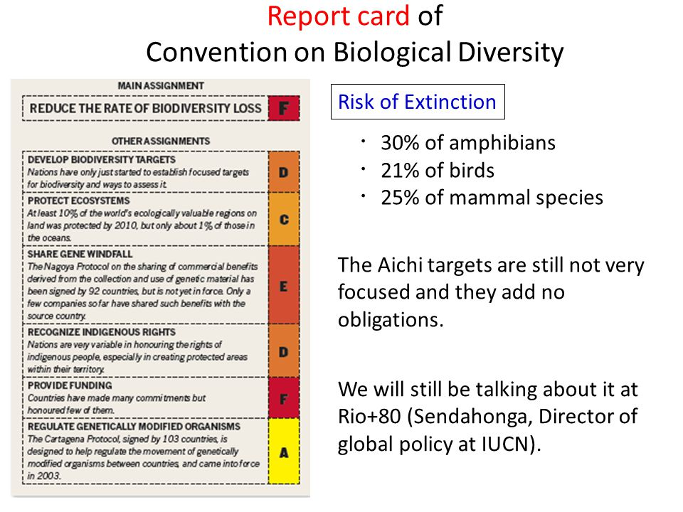 Report card of Convention on Biological Diversity ・ 30% of amphibians ・ 21% of birds ・ 25% of mammal species Risk of Extinction The Aichi targets are still not very focused and they add no obligations.