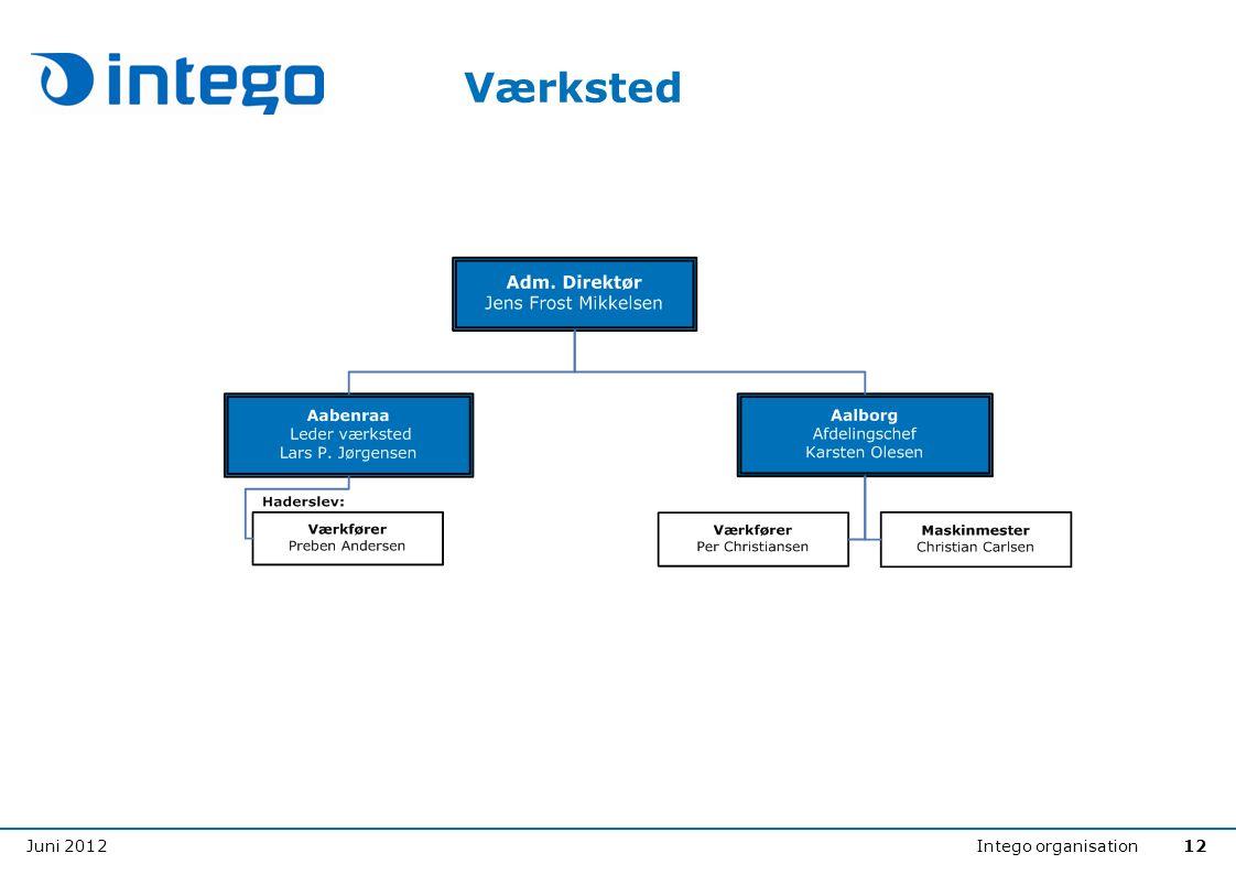 Juni 2012Intego organisation12 Værksted