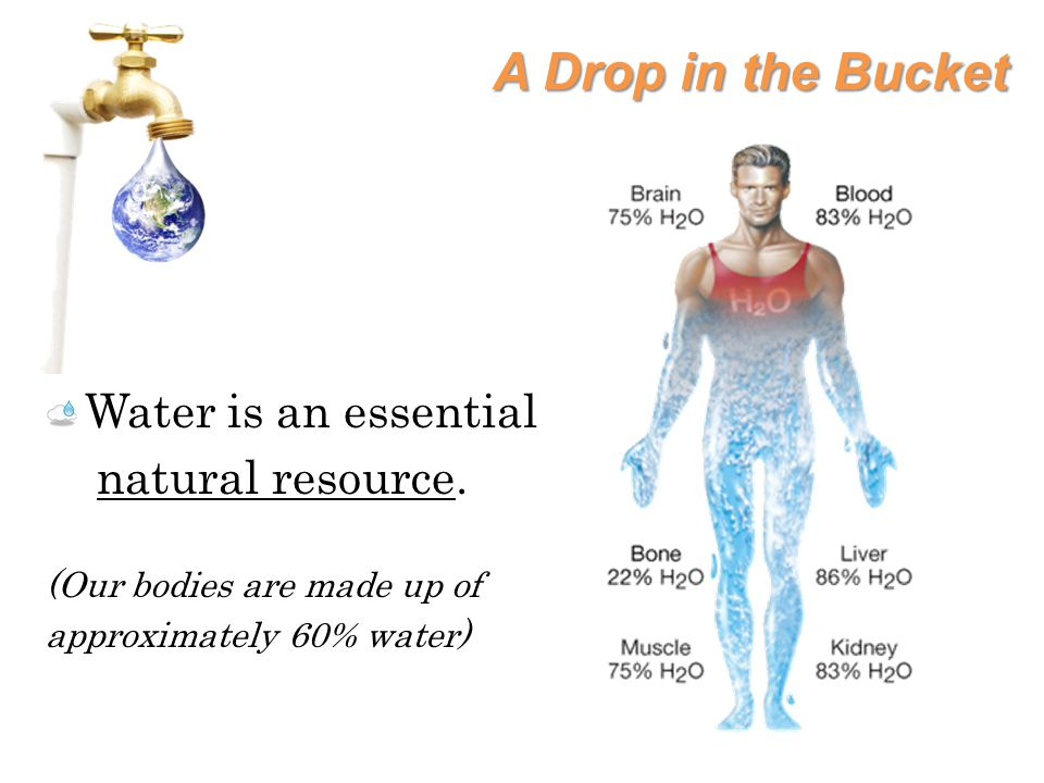 A Drop in the Bucket Water is an essential natural resource.