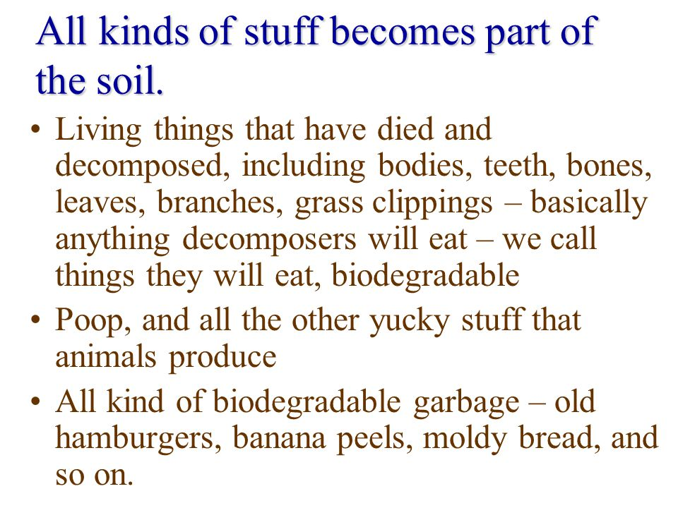 All kinds of stuff becomes part of the soil.