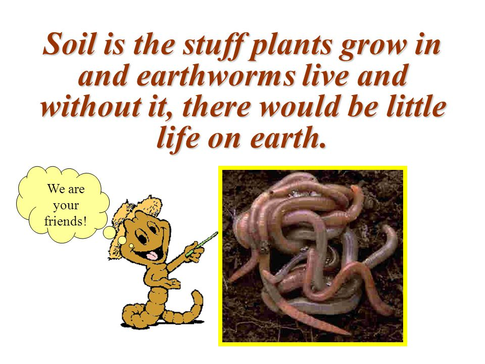 Soil is the stuff plants grow in and earthworms live and without it, there would be little life on earth.