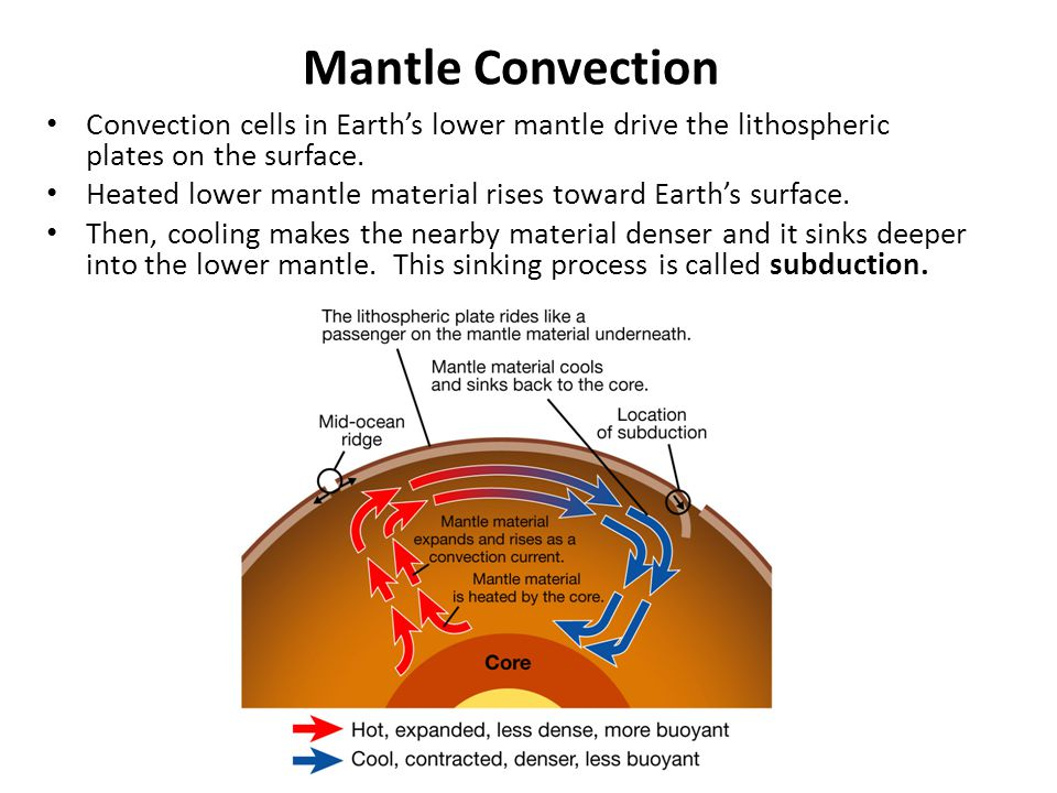 Mantle Convection Convection cells in Earth's lower mantle drive the lithospheric plates on the surface. Heated lower mantle material rises toward Ear