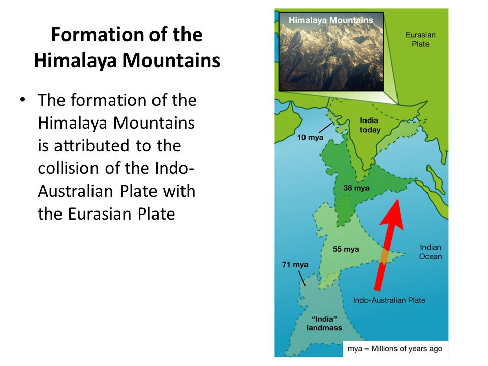 Formation of the Himalaya Mountains The formation of the Himalaya Mountains is attributed to the collision of the Indo- Australian Plate with the Eura