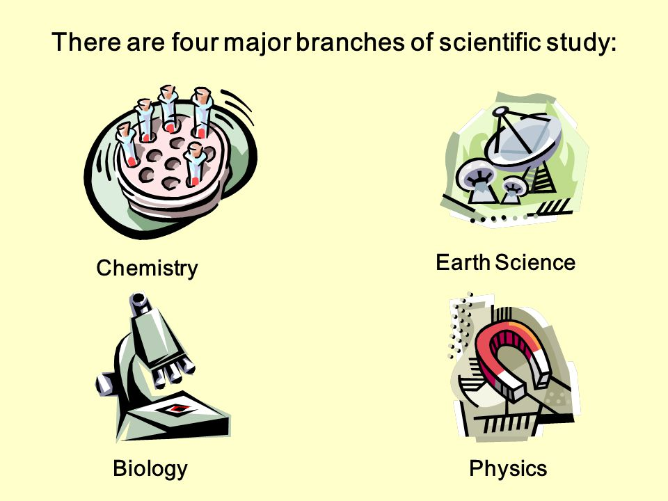 There are four major branches of scientific study: Chemistry Physics Earth Science Biology