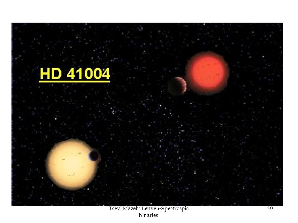59 (Not to scale!) A Planet and a Brown Dwarf in the same system Tsevi Mazeh: Leuven-Spectrospic binaries