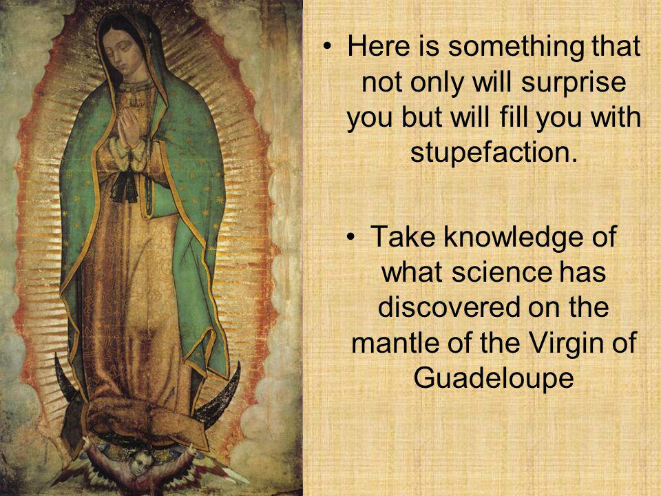 Discoveries made on the mantle (TILMA) of the Virgin of Guadeloupe Empress of America Andre Fernando Garcia Discoveries made on the mantle (TILMA) of the Virgin of Guadeloupe Empress of America Andre Fernando Garcia