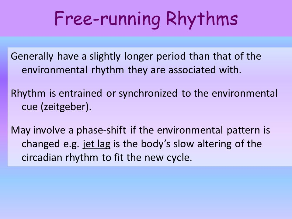 Free-running Rhythms Generally have a slightly longer period than that of the environmental rhythm they are associated with. Rhythm is entrained or sy