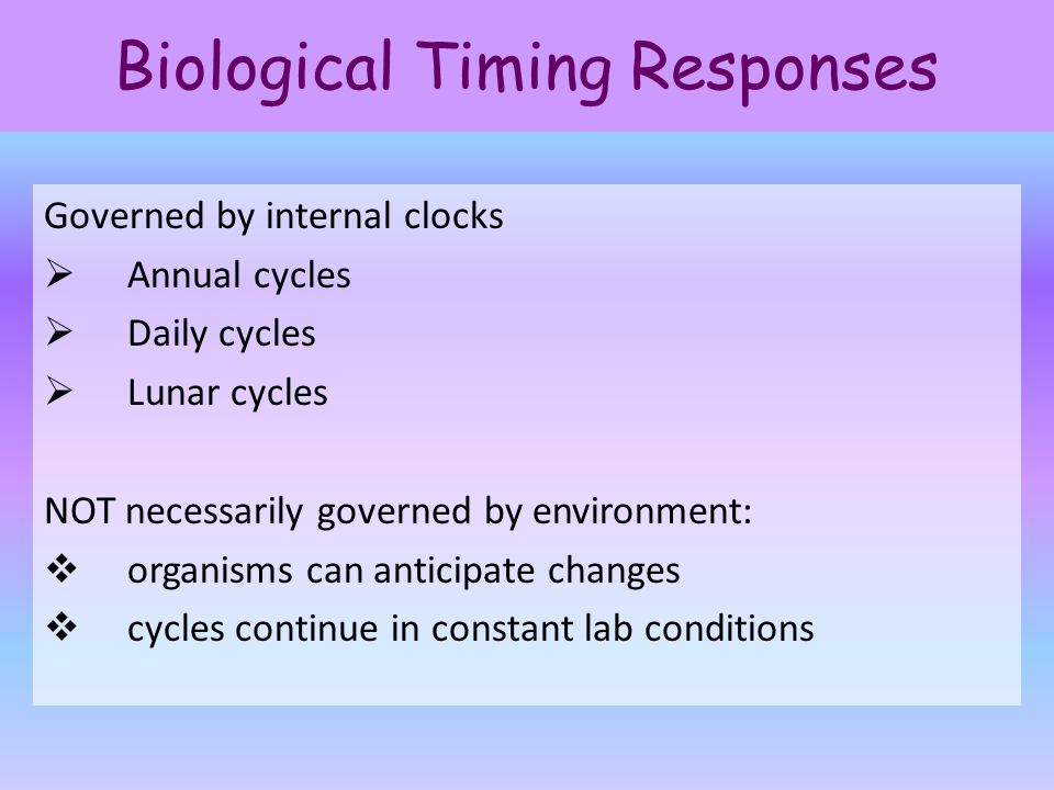 Biological Timing Responses Governed by internal clocks  Annual cycles  Daily cycles  Lunar cycles NOT necessarily governed by environment:  organ