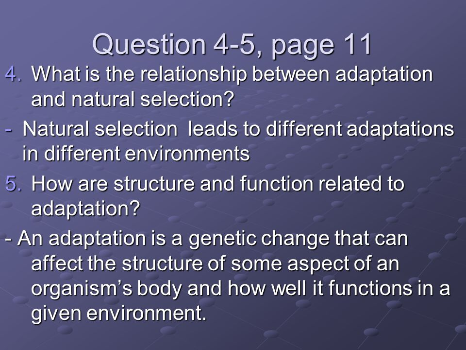 Question 4-5, page 11 4.What is the relationship between adaptation and natural selection.