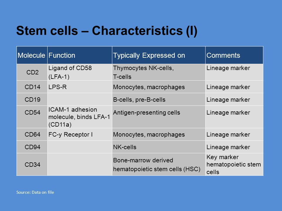 Stem cells – Characteristics (I) MoleculeFunctionTypically Expressed onComments CD2 Ligand of CD58 (LFA-1) Thymocytes NK-cells, T-cells Lineage marker CD14LPS-RMonocytes, macrophagesLineage marker CD19B-cells, pre-B-cellsLineage marker CD54 ICAM-1 adhesion molecule, binds LFA-1 (CD11a) Antigen-presenting cellsLineage marker CD64FC-y Receptor IMonocytes, macrophagesLineage marker CD94NK-cellsLineage marker CD34 Bone-marrow derived hematopoietic stem cells (HSC) Key marker hematopoietic stem cells Source: Data on file