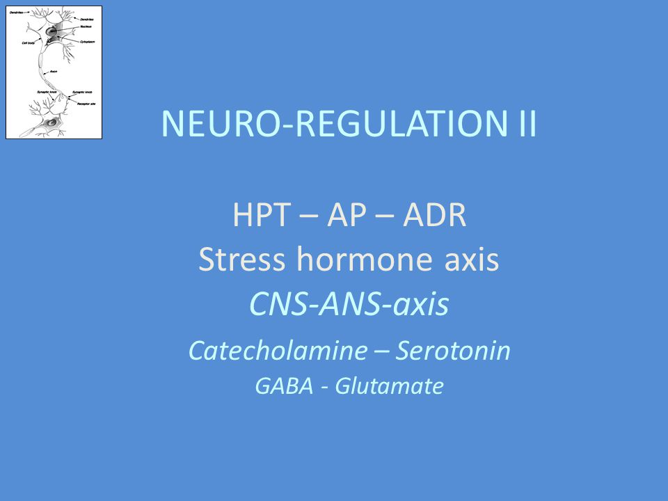 NEURO-REGULATION II HPT – AP – ADR Stress hormone axis CNS-ANS-axis Catecholamine – Serotonin GABA - Glutamate