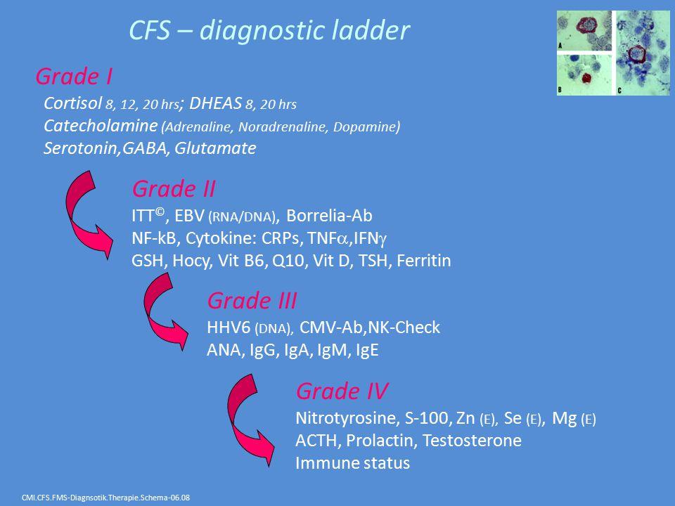 CFS – diagnostic ladder Grade I Cortisol 8, 12, 20 hrs ; DHEAS 8, 20 hrs Catecholamine (Adrenaline, Noradrenaline, Dopamine) Serotonin,GABA, Glutamate Grade II ITT ©, EBV (RNA/DNA), Borrelia-Ab NF-kB, Cytokine: CRPs, TNF ,IFN  GSH, Hocy, Vit B6, Q10, Vit D, TSH, Ferritin Grade IV Nitrotyrosine, S-100, Zn (E), Se (E), Mg (E) ACTH, Prolactin, Testosterone Immune status Grade III HHV6 (DNA), CMV-Ab,NK-Check ANA, IgG, IgA, IgM, IgE CMI.CFS.FMS-Diagnsotik.Therapie.Schema-06.08
