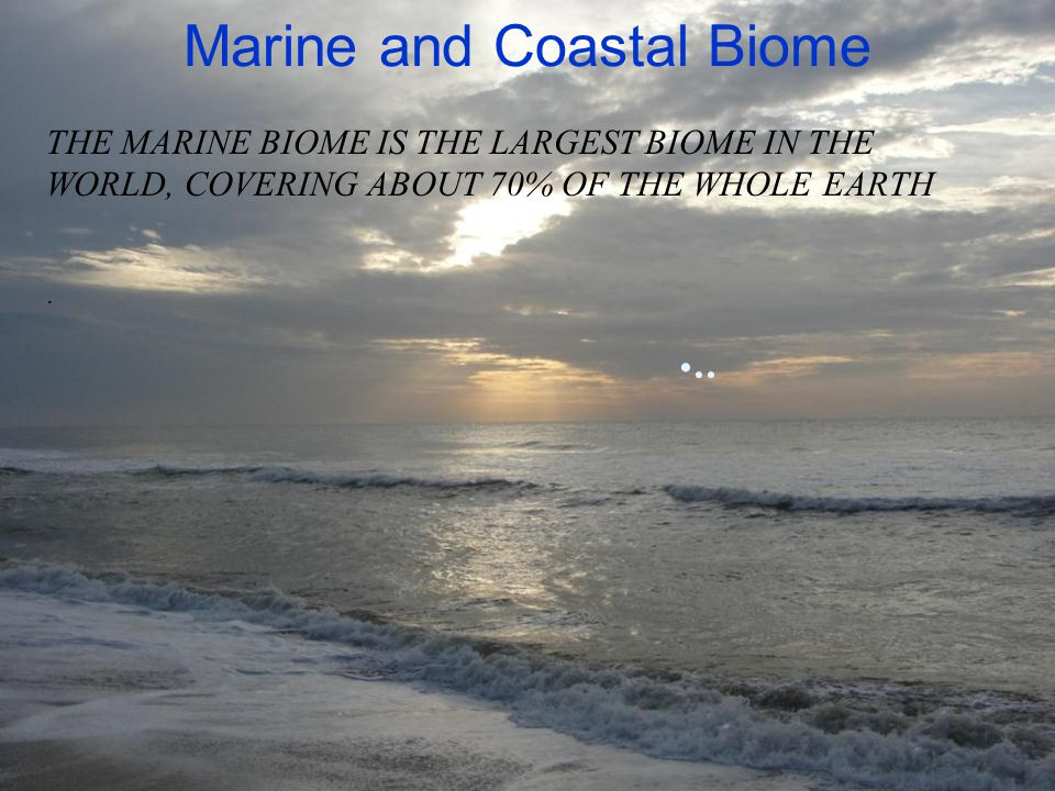 Marine and Coastal Biome.. THE MARINE BIOME IS THE LARGEST BIOME IN THE WORLD, COVERING ABOUT 70% OF THE WHOLE EARTH.