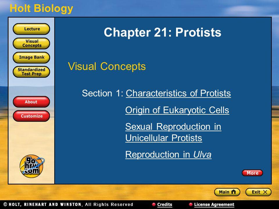 Holt Biology Chapter 21: Protists Visual Concepts Section 1: Characteristics of ProtistsCharacteristics of Protists Origin of Eukaryotic Cells Sexual
