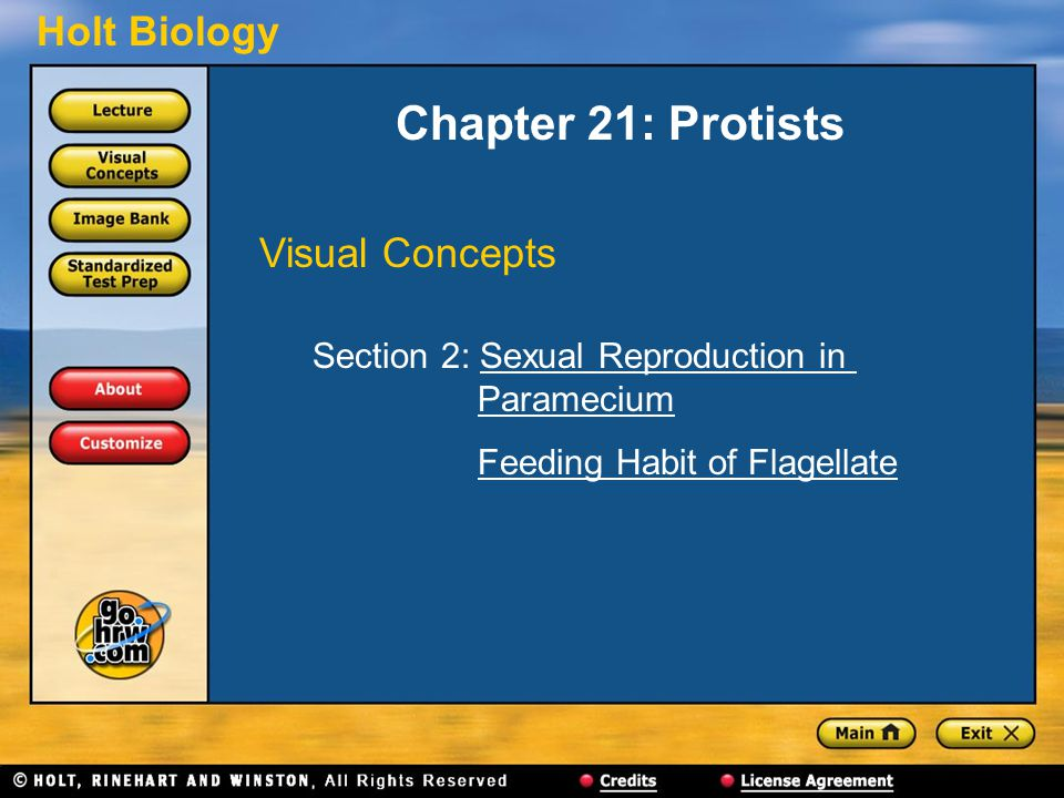 Holt Biology Chapter 21: Protists Visual Concepts Section 2: Sexual Reproduction in ParameciumSexual Reproduction inParamecium Feeding Habit of Flagellate