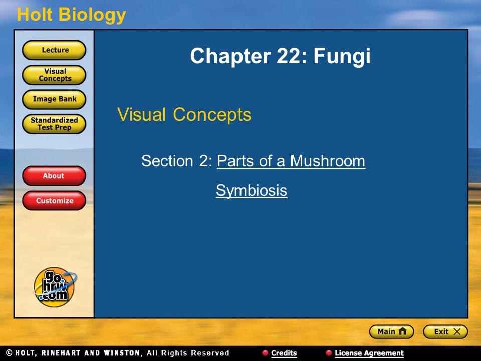 Holt Biology Chapter 22: Fungi Visual Concepts Section 2: Parts of a MushroomParts of a Mushroom Symbiosis