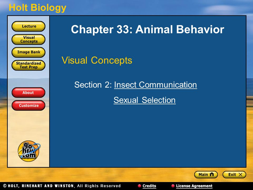 Holt Biology Chapter 33: Animal Behavior Visual Concepts Section 2: Insect CommunicationInsect Communication Sexual Selection