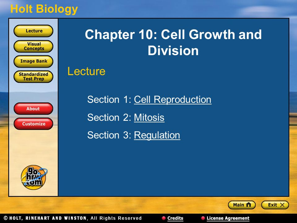 Holt Biology Chapter 10: Cell Growth and Division Section 1: Cell ReproductionCell Reproduction Section 2: MitosisMitosis Section 3: RegulationRegulation Lecture