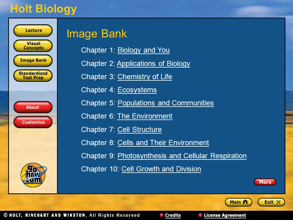 Holt Biology Chapter 1: Biology and YouBiology and You Chapter 2: Applications of BiologyApplications of Biology Chapter 3: Chemistry of LifeChemistry of Life Chapter 4: EcosystemsEcosystems Chapter 5: Populations and CommunitiesPopulations and Communities Chapter 6: The EnvironmentThe Environment Chapter 7: Cell StructureCell Structure Chapter 8: Cells and Their EnvironmentCells and Their Environment Chapter 9: Photosynthesis and Cellular RespirationPhotosynthesis and Cellular Respiration Chapter 10: Cell Growth and DivisionCell Growth and Division Image Bank