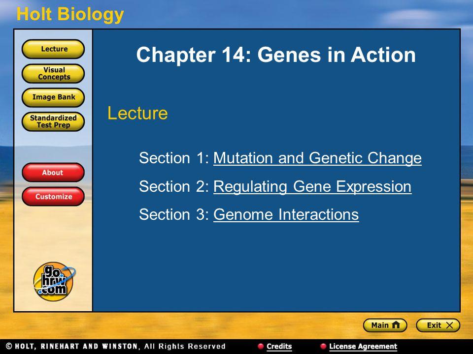 Holt Biology Chapter 14: Genes in Action Section 1: Mutation and Genetic ChangeMutation and Genetic Change Section 2: Regulating Gene ExpressionRegula
