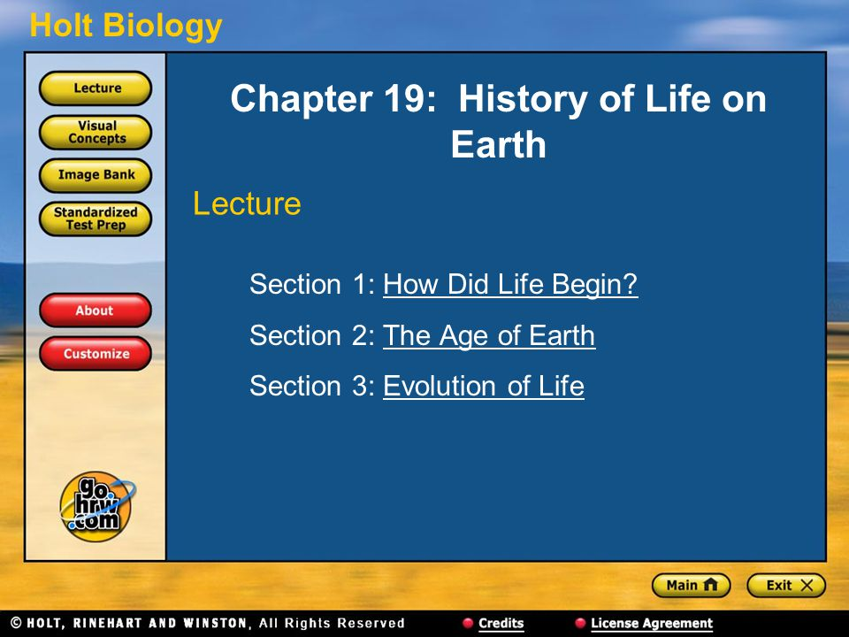 Holt Biology Chapter 19: History of Life on Earth Section 1: How Did Life Begin?How Did Life Begin.