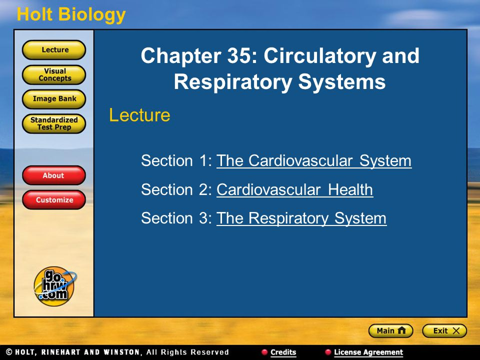 Holt Biology Chapter 35: Circulatory and Respiratory Systems Section 1: The Cardiovascular SystemThe Cardiovascular System Section 2: Cardiovascular H