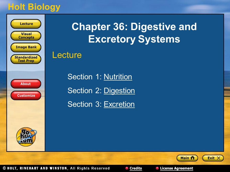 Holt Biology Chapter 36: Digestive and Excretory Systems Section 1: NutritionNutrition Section 2: DigestionDigestion Section 3: ExcretionExcretion Lec