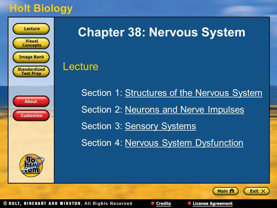 Holt Biology Chapter 38: Nervous System Section 1: Structures of the Nervous SystemStructures of the Nervous System Section 2: Neurons and Nerve ImpulsesNeurons and Nerve Impulses Section 3: Sensory SystemsSensory Systems Section 4: Nervous System DysfunctionNervous System Dysfunction Lecture