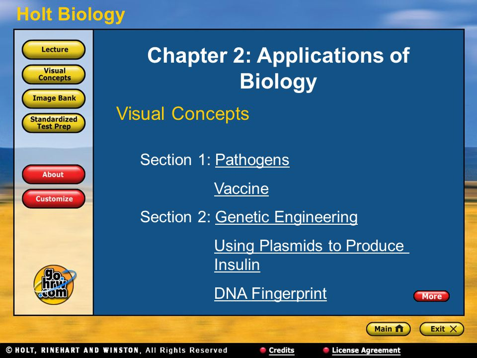 Holt Biology Chapter 2: Applications of Biology Visual Concepts Section 1: PathogensPathogens Vaccine Section 2: Genetic EngineeringGenetic Engineering Using Plasmids to Produce InsulinUsing Plasmids to ProduceInsulin DNA Fingerprint